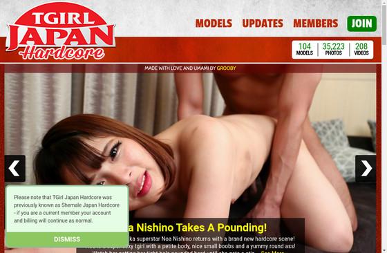 Tgirl Japan Hardcore
